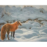 Icy Morning - Red Fox by wildlife artist Ron Parker