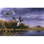 Northern Flight mallards by wildlife artist Robert Hautman