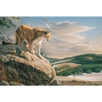 Vantage Point - Cougar by wildlife artist Jim Hautman