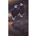 Dawn's Early Light - Bald Eagles by Daniel Smith