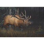 Sun Struck - bugling bull elk by wilderness artist Dan Smith