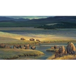 Buffalo Valley by Nancy Glazier