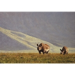 The Survivors - Pair of eastern black rhinos at Ngorongoro Crater by wildlife artist Simon Combes