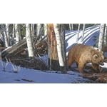 Breaking the Silence - Grizzly bear in winter woods by camouflage artist Judy Larson