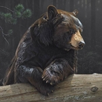 Logging On - portrait of a black bear by wildlife artist Dan Smith