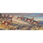 Hi Notes - pronghorns on the move by wildlife artist Nancy Glazier