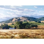 California Wine Country by artist June Carey