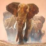 Big Daddy - bull elephant protecting the herd by African wildlife artist Guy Combes
