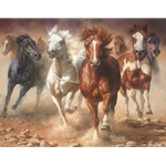 The Power of Freedom - wild mustangs by wildlife artist Bonnie Marris