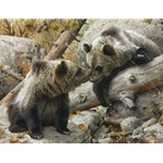 Alaska Chat - grizzly bear cubs by Carl Brenders