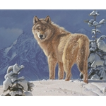 ~ Cold Stare - Wolf in snow by wildlife artist Daniel Smith