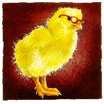 a chick with brains... by comedic artist Will Bullas