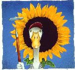 how does your garden grow? - Duck and sunflower by comedic artist Will Bullas