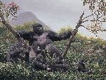 The Guardian - Mountain Gorilla family by wildlife artist Simon Combes
