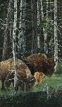 The Survivors - Bison with young by Judy Larson