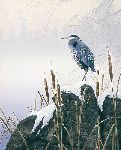 Morning Solitude - Great Blue Heron by Stephen Lyman