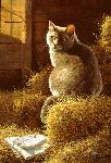 Big Gray's Barn and Bistro - barn cat by artist Bonnie Marris