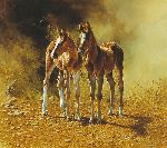 Best Friends - two foals by artist Bonnie Marris