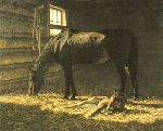 Foal - born this morning by western artist Tucker Smith