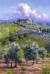 Oil Trees of Chianti by June Carey