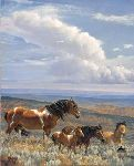 The Whispering Wind - Wild Horses by equine artist Nancy Glazier