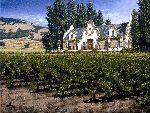 Chimney Rock Winery - Napa Valley California by artist George Hallmark