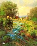 Hill Country Spring by G. Harvey