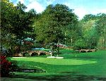 The 11th at Augusta by Larry Dyke