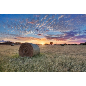Hay Field by Rob Greebon