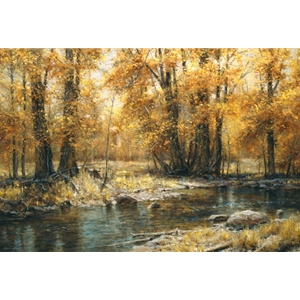 Autumn's Veil - woodland stream in the fall by Robert Peters