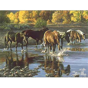Coming In at Sundown - horses crossing river by western artist Tim Cox